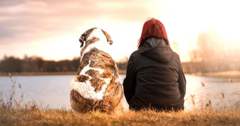 川べりに座る女性と犬