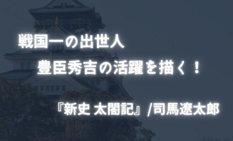 新史太閤記
