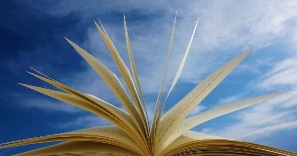 本のページがパラパラめくれる