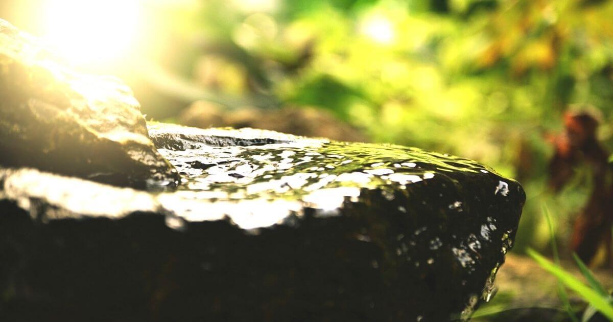 温泉に濡れた岩