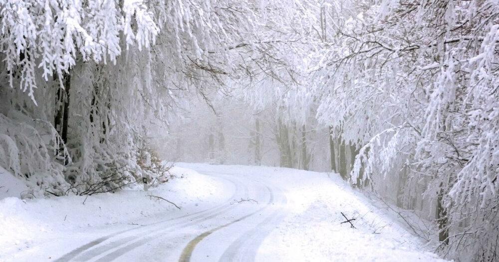 カーブする雪道