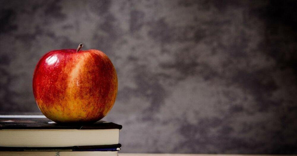 本の上に載っている林檎